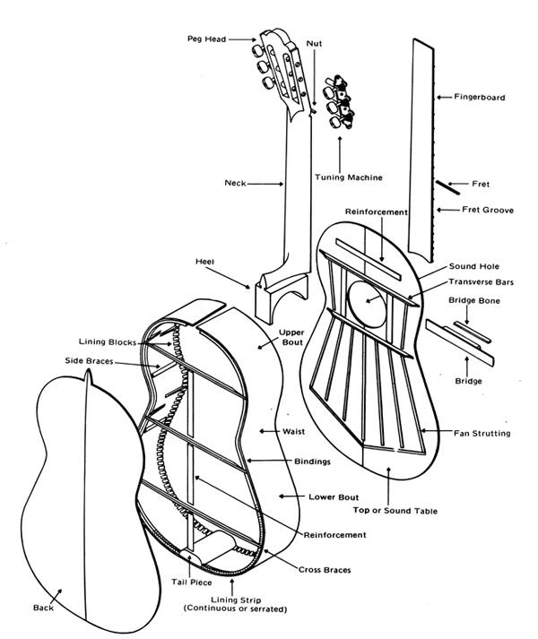 Wiring Diagram Seymour Duncan